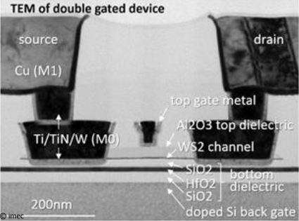 A TEM picture of a double gated WS2 FET device.