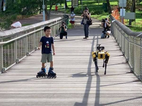 SPOT, a Boston Dynamics robot used to enforce social distancing in Singapore.